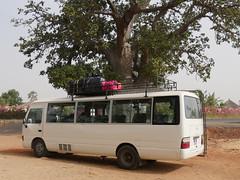 SenegalFromDeltaSaloumToMbour006 (tjabeljan) Tags: mbour moskee mosque termite termiet boabab senghor senegal africa afrika