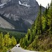 Spiral Tunnel Viewpoint and a Drive Through the Canadian Rockies (Yoho National Park)