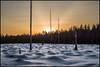 Snö på kalhygget (Jonas Thomén) Tags: kalhygge clearcut snow snö forest skog sunset solnedgång sky himmel evening kväll winter vinter sunbeams solstrålar hdr