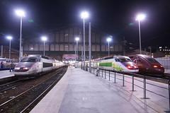 TGV SE n°01  ( PSE : Paris / Sud-Est ) + TGV IZY + TGV Thalis en Gare de Paris-Nord (CHABOT Christophe) Tags: frenchrailroadphotography frenchrailwayphotography frenchtrainphotography frenchrailroad railway railroad tgvse01 tgv01 izy alstom garedunord paris rail voieferrée locomotive sncf thalys tgvsudest hauptbahnhof engare gare bahnof bahnhoh traingrandevitesse tgv highspeedtrain hochgeschwindigkeitszug psen°01 tgvpsen°01 tgvsen°01 fasttrain schnellzug schnellzuch héichschnellzug spoorweg spoorwegfrankrijk railwayfrance eisenbahnfrankreich eisenbahnjernbane frankrigjernbaneferrovia franciaferrocarril carmillon parisnord livréecarmillon frenchtrainhighspeed train trainhighspeed frenchtrainhighspeedn°01 trainhighspeedn°01