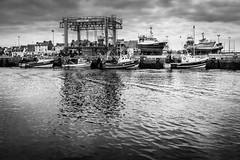 Port du Guilvinec (loroche25) Tags: merbateau bretagne finistère france port guilvinec noirblanc noiretblanc blackandwhite negroyblanco canon canon1022 monochrome