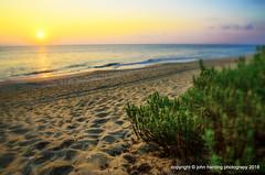 The Greening of the Dunes (T i s d a l e) Tags: tisdale greeningofthedunes beach sunrise southernshores outerbanks northcarolina summer 2013
