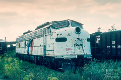 Put Out to Pasture (jwjordak) Tags: weeds e8 njt cloudy train binghamton newyork unitedstates us