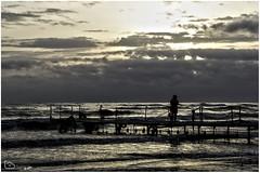 Lonely girl in the morning on pier at Caspian Sea (alamond) Tags: girl lonely pier sea caspiansea morning sunrise light clouds water ramsar shadow silhouette manzadaran iran canon 7d markii mkii llens ef 1740 f4 l usm alamond brane zalar
