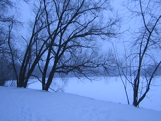 at a pond in winter