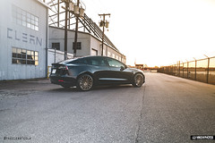 CLEAN / Vossen Tesla Model 3 (Mike M. Photos) Tags: mikemphotos vossen vossenwheels tesla model3 sony a7rii sonya7rii dallas clearbra wrap thecleantesla speedshield