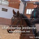214L_0481 thumbnail