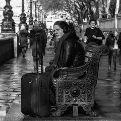 Usual day at London (Krisztina_Photography) Tags: people portrait monochrome london street tree city travelling holiday women sea bridge