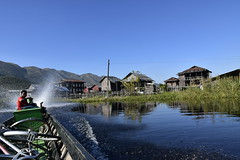 _DSC0512 (lnewman333) Tags: nyaungshwe myanmar burma sea southeastasia asia inlelake lake freshwaterlake shanstate bike bicycle boat kaungtaingvillage maingthaukvillage