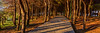 Chalkida (Giovanni C.) Tags: escan01995 film panoramic greece analog fuji panorama pano 6x17 617 wide ultrawide analogue g617 landscape mediumformat mf nohdr nature gcap giovannic hellas griechenland ελλάσ ελλάδα grecia europe scenic saveearth filmisnotdead lovefilm 120 220 v700 epson scanner scanning fujica fujifilm 160ns negative