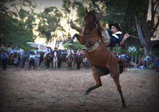 Andrinho e Maragata da Quilero