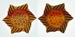 Star-flowers (Marjan Smeijsters) (De Rode Olifant) Tags: origami paper paperfolding tessellation marjansmeijsters starflowers 3d pattern hexagon triangle smileonsaturday madebyme