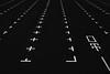東京monochrome (tomorca) Tags: parking monochrome blackandwhite tokyo odaiba fujifilm xt2