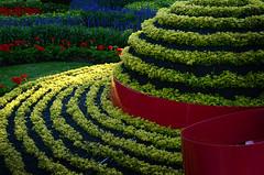 Chapeau (DJ Axis) Tags: mosaïcultures œuvres rosemont florales jardins horticulture gardens sculptures plantes plants feuillages foliage végétaux montréal jardin botanique internationales 2013 chapeau hat boucle rouge red buckle
