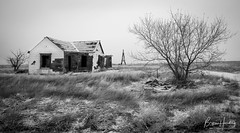 The Plains Fall Silent - Weld County, Colorado (www.rootsstudiophoto.com) Tags: homestead weldcounty coloradophotography farm ranch highplains plains landscapephotography blackandwhitephoto abandonedbuilding ghosttown