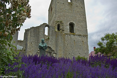 IMGP7225 (roughlegged) Tags: photography apsc pentax k3ii sweden visby purple ruins church statue echium vulgare