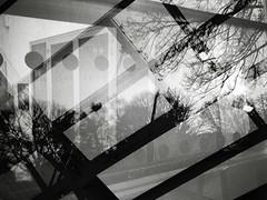 the last fatal hour (Jitka Ertelová) Tags: monotone monochrome windows doors reflections architecture city sony doubleexposure