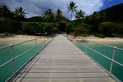 Fitzroy (moniq84) Tags: fitzroy island queensland coral blue azur green rain forest palma beach water ocean seascape seascapes australia oceania world resort seashore paradise sigma