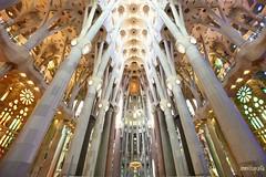 Barcelona, Spain. Sagrada Familia. (rrnavero) Tags: sagradafamilia barcelona spain canon1635lf4is catedral interiores arquitectura iglesia españa canoneos6d jesusmariamartin colores europa monumentos religión