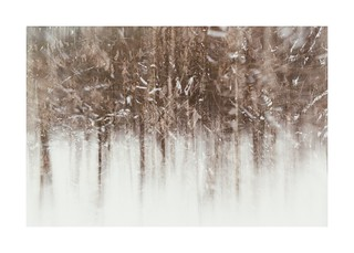 Snow in the New Forest II