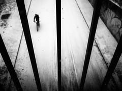 between the lines (Sandy...J) Tags: olympus street streetphotography sw schwarzweis strasenfotografie snow winter lines linien blackwhite bw black biker white urban noir photography fotografie germany deutschland