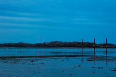 Hingham, MA (cyuself) Tags: hingham boston ma massachusetts water ocean lowtide low tide blue longexposure night