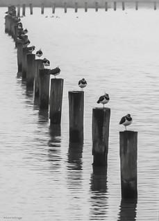 On a row