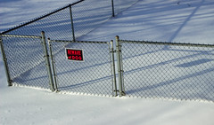 Shadows on Fencing (Alex Wilson Photography) Tags: feet foot snow snowy sky light lights clouds cloud tree trees green brown school bus bussing yellow red sign street road fence fencing shadow shadows window windows screen shade black white color