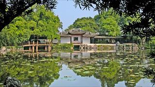 Le jardin de lotus de Liu Yong à Nanxun (Chine)