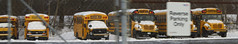 First Student #550, #504, #417, #388, #386, #363 (ThoseGuys119) Tags: firststudentinc wallkillny schoolbus thomasbuilt icce freightliner fs65 ce