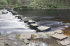 Stepping Stones, Hardcastle Crag (Kingsley_Allison) Tags: hardcastlecrag steppingstones westyorkshire water beck river crossings hebdenbridge national trust d7200 nikon