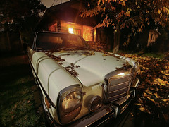 Leaf Litter and Mercedes Benz (RZ68) Tags: 1973 mercedes benz 280 car classic vintage old leaves fallen litter covered night long exposure lg g6 yard house white cream wide angle dark tree street driveway