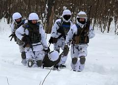"""У районі АТО десантники тренуються за стандартами НАТО (Ministry of Defense of Ukraine) Tags: у районі ато десантники тренуються за стандартами нато """"гіацинт"""" """"гвоздика"""" """"піон""""т64бмт64 т80 т72натоппозрвртв разведка розвідка десантура десантування ак74 пмм2м бмп бтр пулемет кулемет піхота полігон армия"""