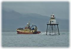 Steaming past the lighthouse, Lough Foyle. (willieguildea) Tags: boat fishingboat trawler lighthouse river lough loughfoyle water waterscape coast coastal coastalireland nikon ireland eire donegal ulster coastline moville vessel sea sky ocean mountain