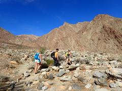 P1270561 (Dr. Fieldgood) Tags: anza borrego california camping amber larry amy desert