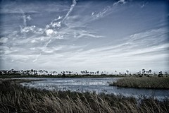 Afternoon on the savanna (FotoFloridian) Tags: nature water landscape sky river outdoors scenics ruralscene cloudsky tree summer grass lake blue reflection tranquilscene beautyinnature cloudscape marsh sony alpha a6000 florida savanna park
