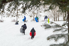 Classic Sledding Scene (aaronrhawkins) Tags: sled sledding slope hill winter snow snowstorm evergreen cold ice downhill colorful slide slip tree provo utah canyoncrest school playground run hurry eager aaronhawkins
