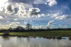 Row of reeds (Just landscapes) Tags: clouds cloud sky iphone7 iphone farmland reeds valley countryside country essex britain england uk rural scenic scenery landscape riverbank riverside river