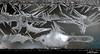 IceFish_0395 (photoholic1) Tags: icecrystals icepattern icecrystal ice winter windowfrost frost