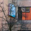 a bank with branches (msdonnalee) Tags: bank tree branches barebranches reflection reflexion reflisse refleccione reflexão reflejo arbol baum sign windowreflection window janela fenster finestra ventana fenêtre