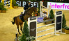 AW3Z3210_R.Varadi_R.Varadi (Robi33) Tags: csi2018basel elite horseequestrian horsewoman horseriding testing referee jumping scuba exercises switzerland trophy worldclass spectator