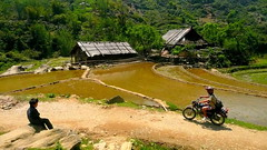 Good Riding Vietnam (Eye of Brice Retailleau) Tags: angle beauty composition landscape outdoor panorama paysage perspective scenery scenic view extérieur sunny backpacking earth road route travel countryside people boy motorcycle roadtrip ride riding rice fields