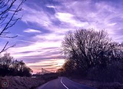 Sunset drive 2, Scotland (picsbyCaroline) Tags: road tree sunset sun sky drive scotland landscape colour bright