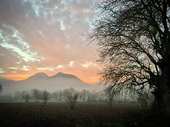 Colourful foggy sunrise 1 (VillaRhapsody) Tags: sunrise red pink morning dawn landscape rural village kayaköy fethiye tree foggy misty