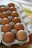Eggs (~ Liberty Images) Tags: eggs food kitchen eat yum browneggs home