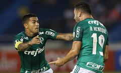 Junior Barranquilla x Palmeiras (01/03/2018) (sepalmeiras) Tags: copalibertadores juniorbarranquilla metropolitano palmeiras sep juniorbarranquillacolxpalmeiras01032018 bhenrique dudu