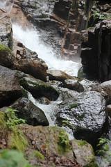 IMG_0835 (comtrag) Tags: flumegorgenh flumegorge nh newhampshire lincolnnh