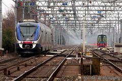 MinuettoTD_Conegliano_26gen2018 (treni_e_dintorni) Tags: minuetto minuettotd minuettodiesel conegliano d245 train züge trenidintorni treniedintorni treni thomasradice diesel
