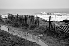 It's tough being a fence in the winter. (WilliamND4) Tags: hff fencefriday blackandwhite beach nikon d810