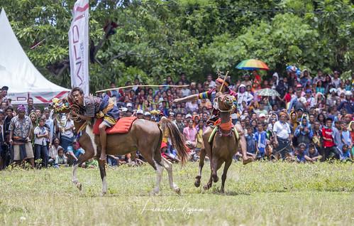Pasola festival - Sumba island